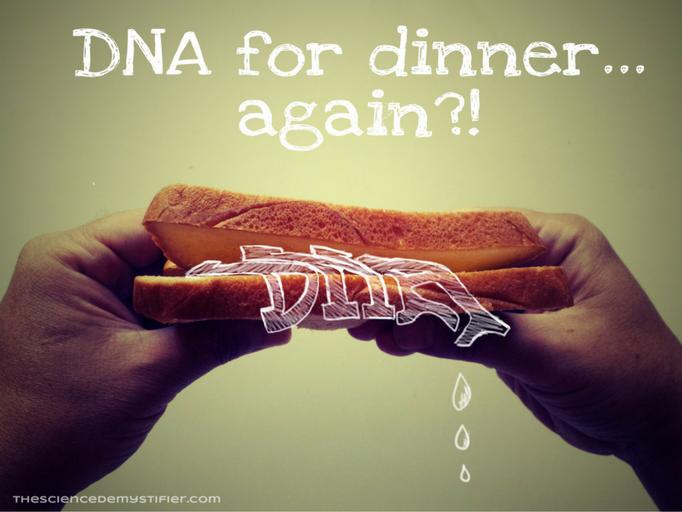 DNA in food-DNA sandwich