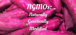NGMOs: Naturally, Genetically, Modified