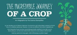 The Incredible Journey of a Crop